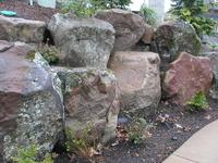Image Windswept Mossy Boulders